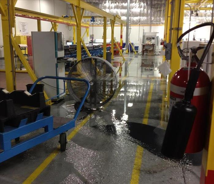 Water Damage in Wrap Plant