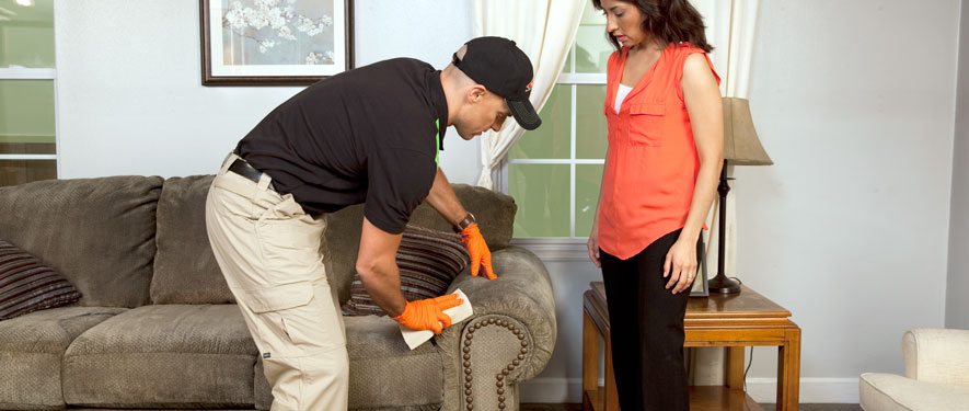 Williamsburg, VA carpet upholstery cleaning